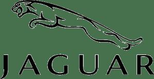 Jaguar geuren